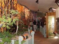 Interior del Centro de Interpretación de Muniellos