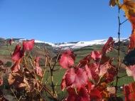 Primeras nevadas del otoño