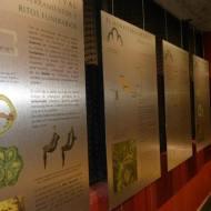 Museo del Parador