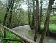 Paseo del Vino con el río Luiña