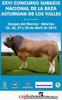 subasta nacional de la raza asturiana de los valles en Cangas del narcea