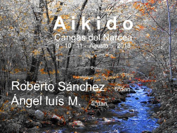Aikido Cangas del Narcea