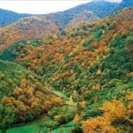 parque natural de fuentes