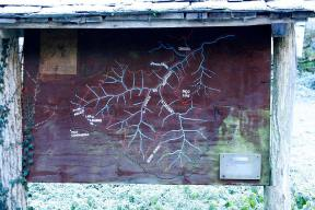 Panel Indicador en el bosque de Muniellos