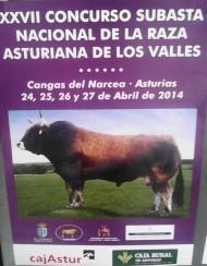 XXVII Concurso Subasta Nacional de la Raza Asturiana de los Valles